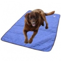 Dog Cooling Pad - Evaporative - Blue - XL